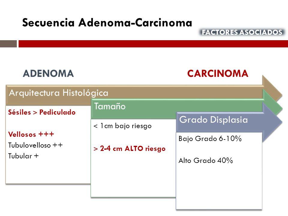 Secuencia Adenoma-Carcinoma Arquitectura Histológica Sésiles ˃ Pediculado Vellosos +++ Tubulovelloso ++ Tubular + Tamaño ˂ 1cm bajo riesgo ˃ 2-4 cm AL