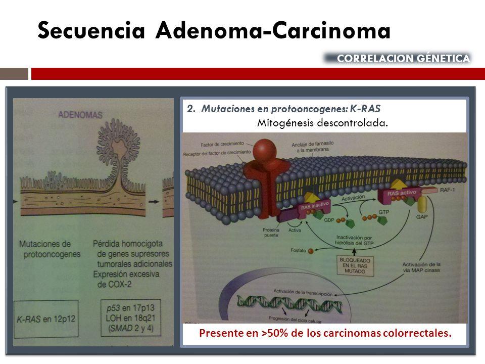 Secuencia Adenoma-Carcinoma CORRELACION GÉNETICA 2. Mutaciones en protooncogenes: K-RAS Mitogénesis descontrolada. Presente en ˃50% de los carcinomas