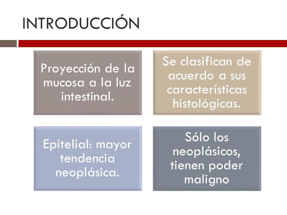 INTRODUCCIÓN Proyección de la mucosa a la luz intestinal. Se clasifican de acuerdo a sus características histológicas. Epitelial: mayor tendencia neop