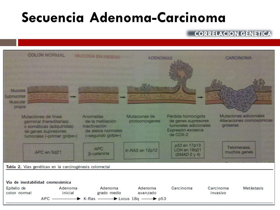 Secuencia Adenoma-Carcinoma CORRELACION GÉNETICA