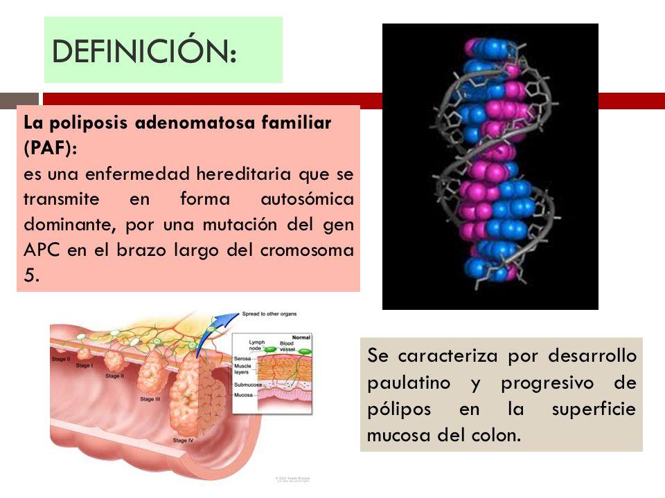 DEFINICIÓN: Se caracteriza por desarrollo paulatino y progresivo de pólipos en la superficie mucosa del colon. La poliposis adenomatosa familiar (PAF)