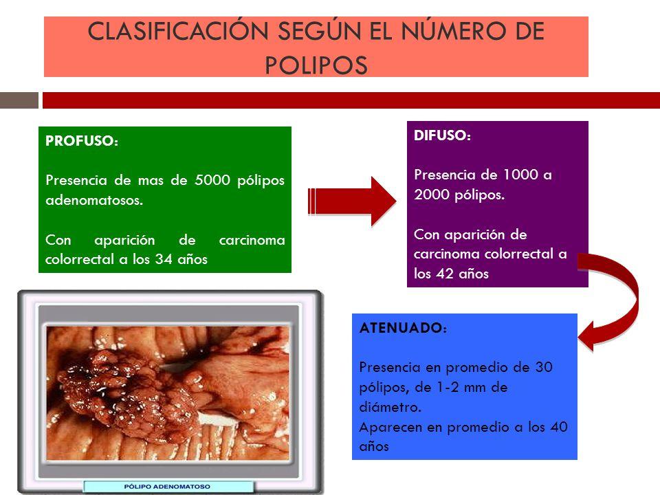 CLASIFICACIÓN SEGÚN EL NÚMERO DE POLIPOS PROFUSO: Presencia de mas de 5000 pólipos adenomatosos. Con aparición de carcinoma colorrectal a los 34 años
