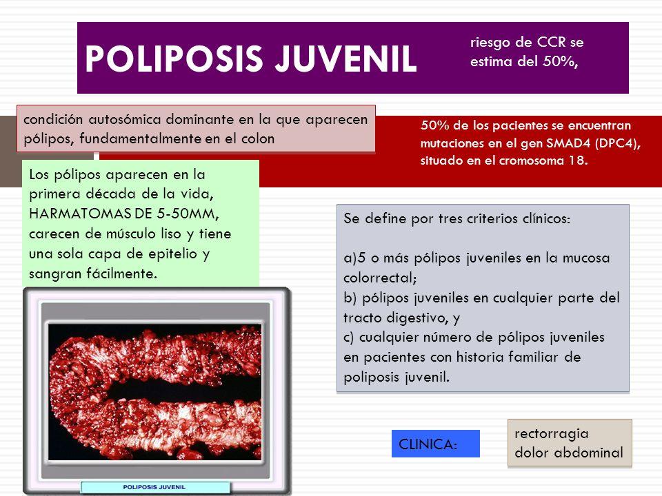POLIPOSIS JUVENIL condición autosómica dominante en la que aparecen pólipos, fundamentalmente en el colon Se define por tres criterios clínicos: a)5 o