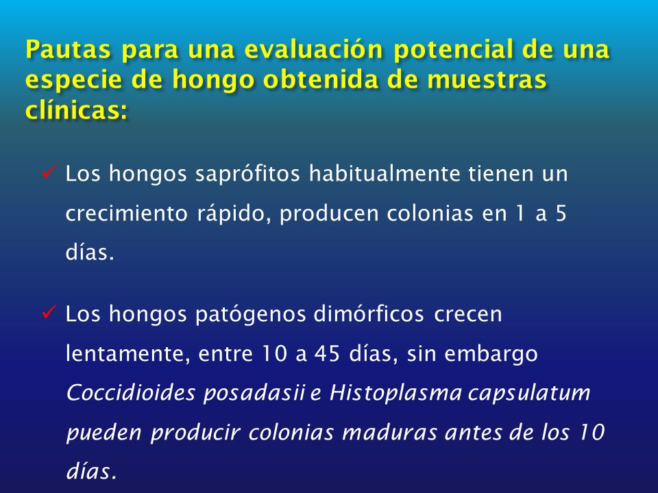 Pautas para una evaluación potencial de una especie de hongo obtenida de muestras clínicas: Los hongos saprófitos habitualmente tienen un crecimiento rápido, producen colonias en 1 a 5 días.