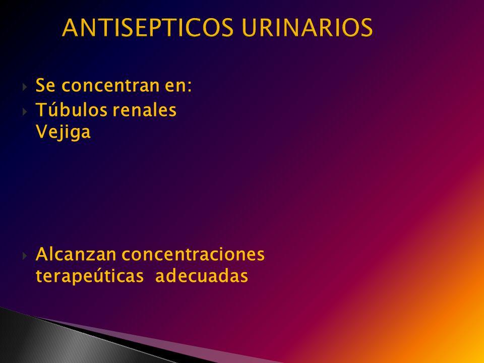 Se concentran en: Túbulos renales Vejiga Alcanzan concentraciones terapeúticas adecuadas