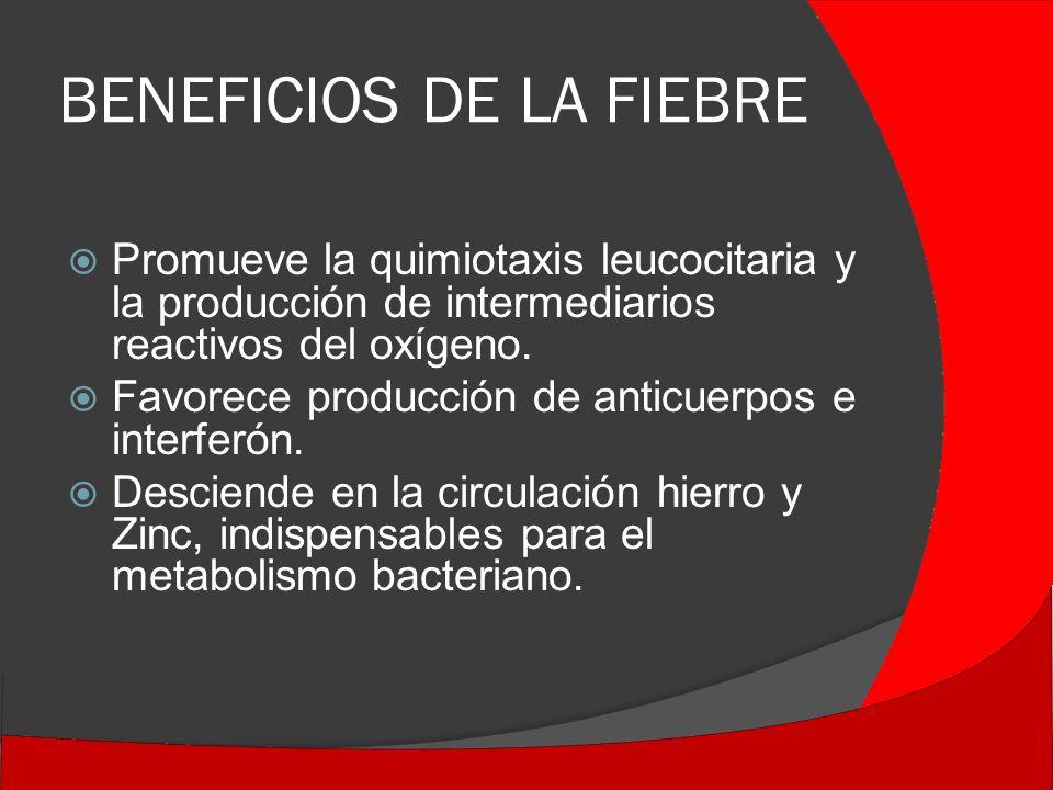 BENEFICIOS DE LA FIEBRE Promueve la quimiotaxis leucocitaria y la producción de intermediarios reactivos del oxígeno.