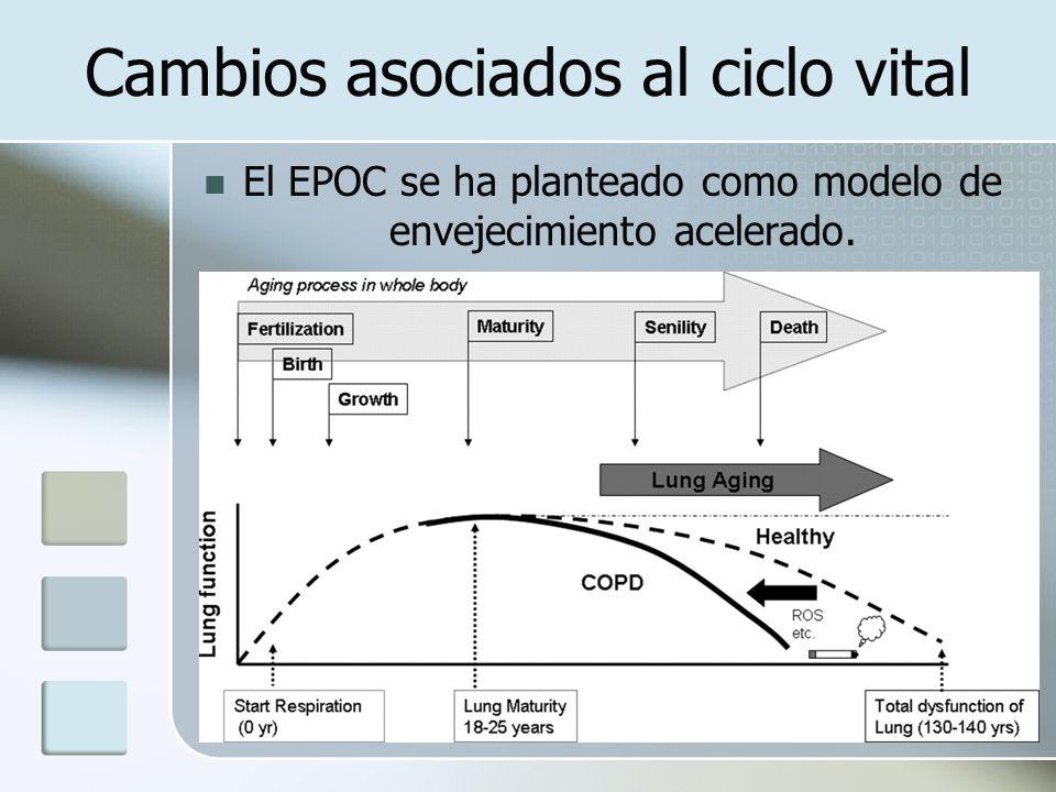 Cambios asociados al ciclo vital El EPOC se ha planteado como modelo de envejecimiento acelerado.
