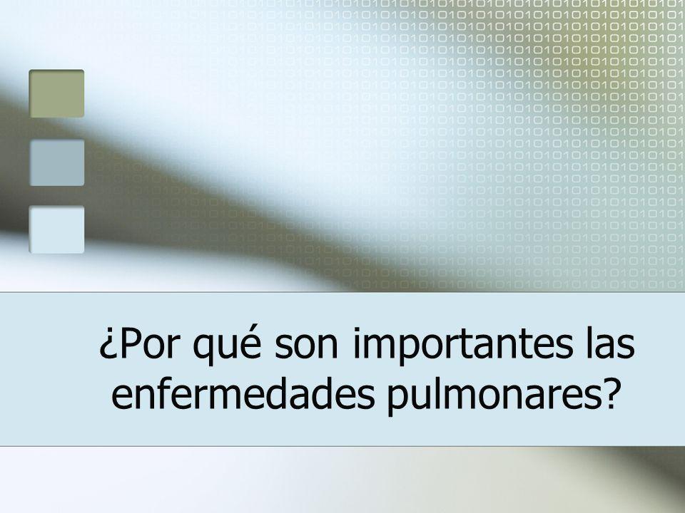 3° Causa de Muerte en Ancianos Primer Informe Estado de Situación de Salud en la Persona Adulta Mayor en Costa Rica http://www.ucr.ac.cr/documentos/ESPAM/espam.html