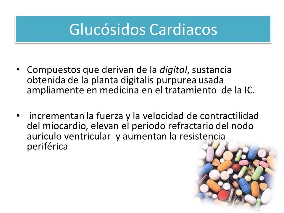 Glucósidos Cardiacos Compuestos que derivan de la digital, sustancia obtenida de la planta digitalis purpurea usada ampliamente en medicina en el trat