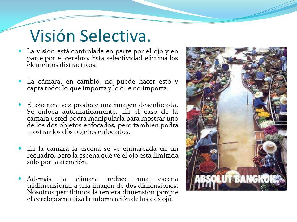 Visión Selectiva. La visión está controlada en parte por el ojo y en parte por el cerebro. Esta selectividad elimina los elementos distractivos. La cá