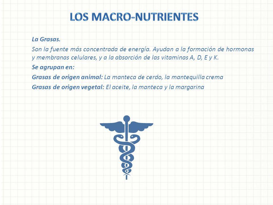 La Grasas. Son la fuente más concentrada de energía. Ayudan a la formación de hormonas y membranas celulares, y a la absorción de las vitaminas A, D,