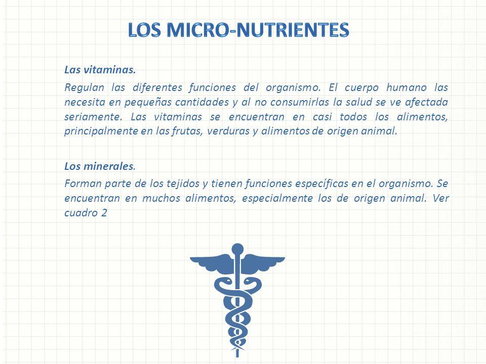 Las vitaminas. Regulan las diferentes funciones del organismo. El cuerpo humano las necesita en pequeñas cantidades y al no consumirlas la salud se ve