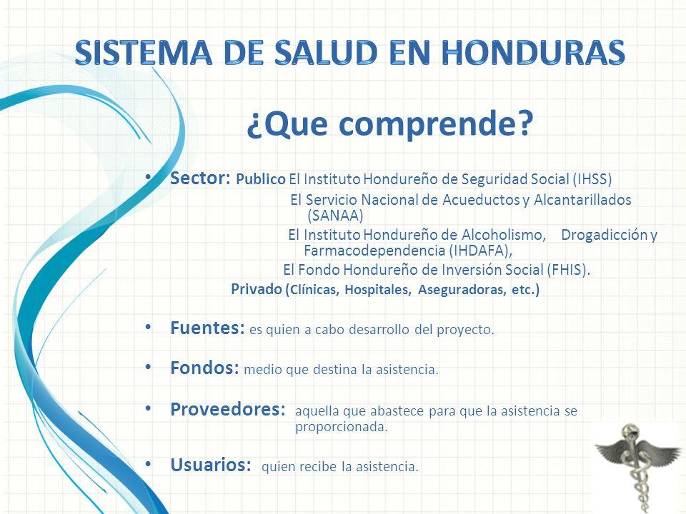 Sector: Publico El Instituto Hondureño de Seguridad Social (IHSS) El Servicio Nacional de Acueductos y Alcantarillados (SANAA) El Instituto Hondureño