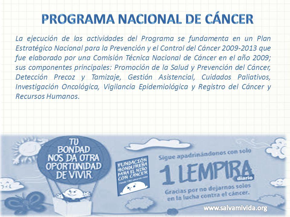 La ejecución de las actividades del Programa se fundamenta en un Plan Estratégico Nacional para la Prevención y el Control del Cáncer 2009-2013 que fu