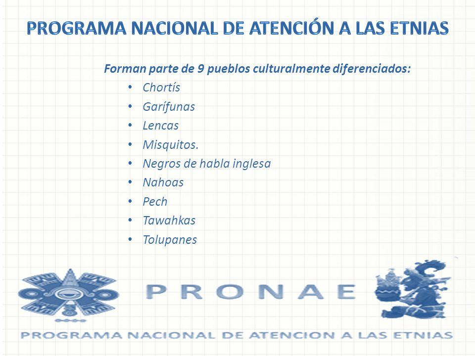 Forman parte de 9 pueblos culturalmente diferenciados: Chortís Garífunas Lencas Misquitos. Negros de habla inglesa Nahoas Pech Tawahkas Tolupanes