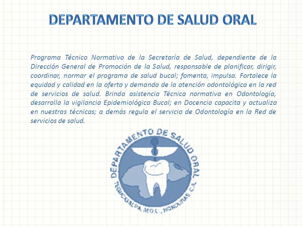 Programa Técnico Normativo de la Secretaría de Salud, dependiente de la Dirección General de Promoción de la Salud, responsable de planificar, dirigir