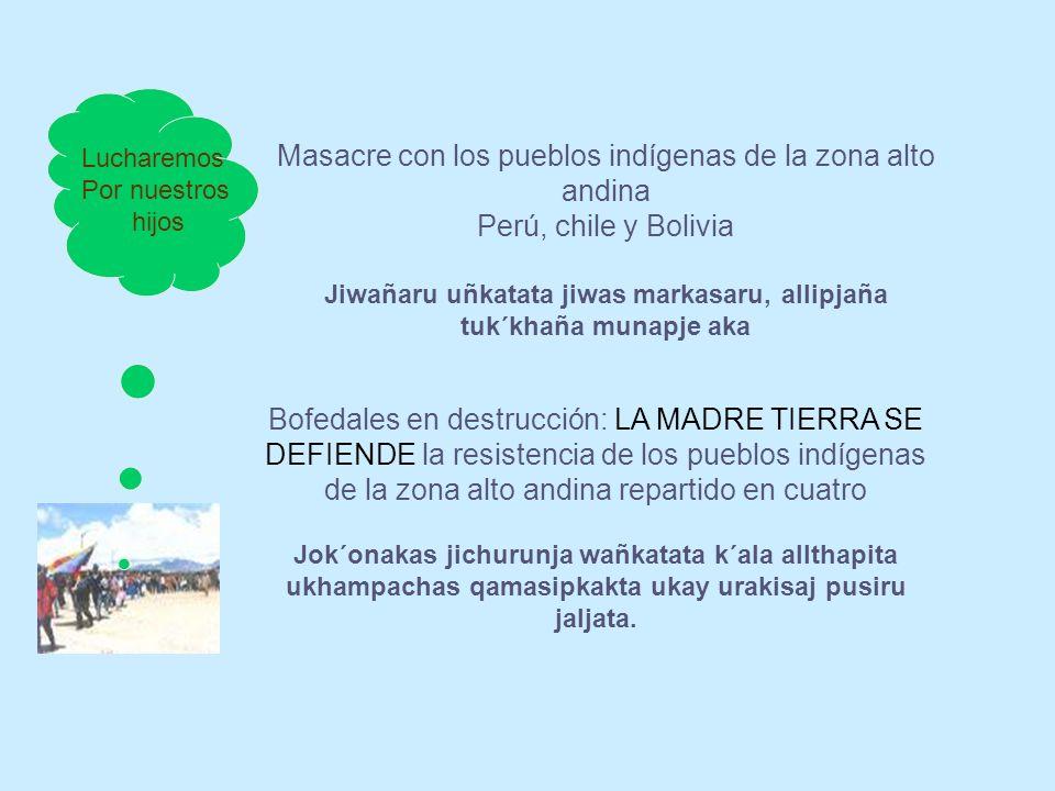 Bofedales en destrucción: LA MADRE TIERRA SE DEFIENDE la resistencia de los pueblos indígenas de la zona alto andina repartido en cuatro Jok´onakas ji
