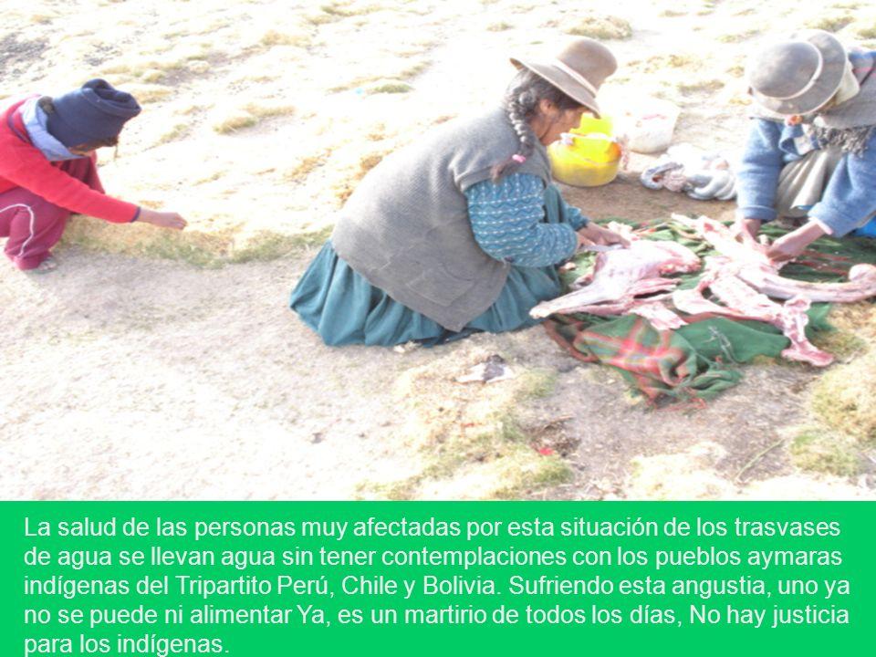 La salud de las personas muy afectadas por esta situación de los trasvases de agua se llevan agua sin tener contemplaciones con los pueblos aymaras in