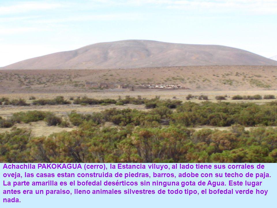 Achachila PAKOKAGUA (cerro), la Estancia viluyo, al lado tiene sus corrales de oveja, las casas estan construida de piedras, barros, adobe con su tech