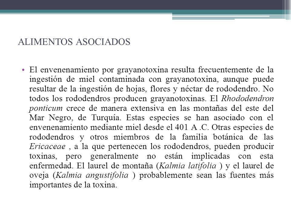 ALIMENTOS ASOCIADOS El envenenamiento por grayanotoxina resulta frecuentemente de la ingestión de miel contaminada con grayanotoxina, aunque puede res