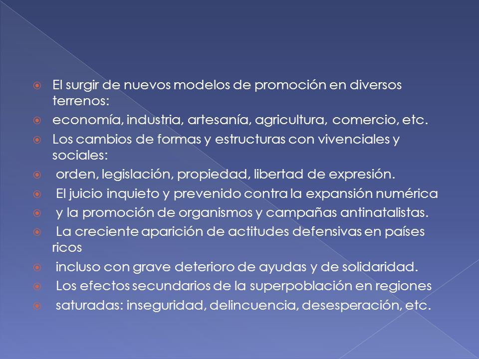 El surgir de nuevos modelos de promoción en diversos terrenos: economía, industria, artesanía, agricultura, comercio, etc. Los cambios de formas y est