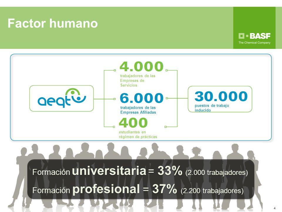 Factor humano trabajadores de las Empresas de Servicios estudiantes en régimen de prácticas trabajadores de las Empresas Afiliadas puestos de trabajo inducido Formación universitaria = 33% (2.000 trabajadores) Formación profesional = 37% (2.200 trabajadores) Formación universitaria = 33% (2.000 trabajadores) Formación profesional = 37% (2.200 trabajadores) 4