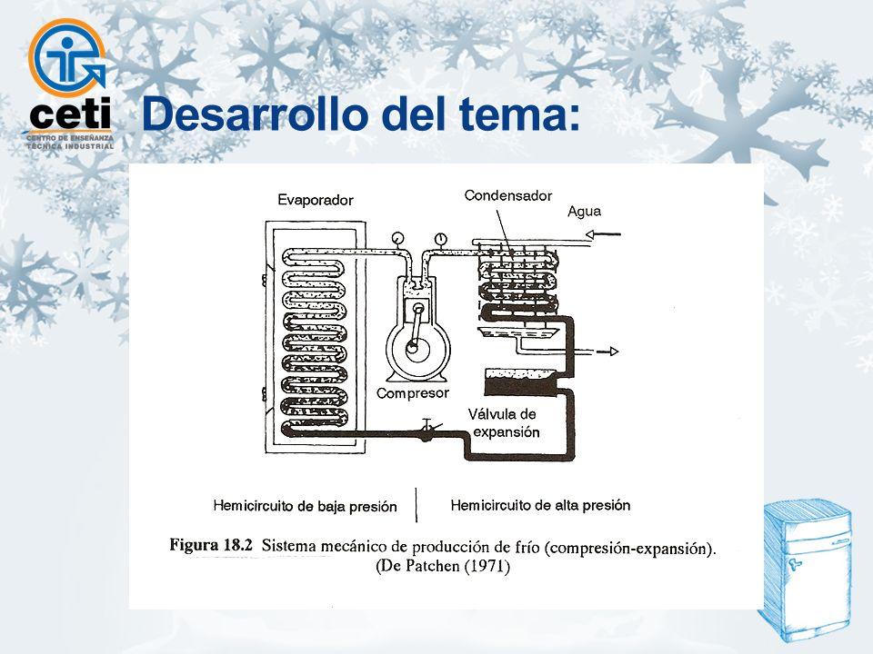 Sistema de congelación mecánica Congeladores de cinta sinfín.