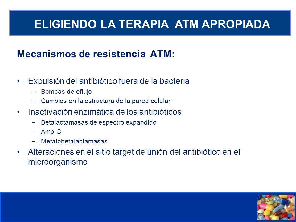 Comité de Prevención y Control de Infecciones Asociadas a la Atención de Salud ELIGIENDO LA TERAPIA ATM APROPIADA Mecanismos de resistencia ATM: Expul