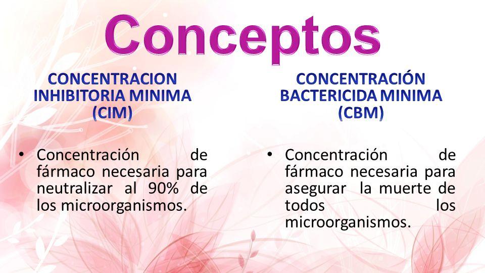 Agentes bactericidas que inhiben la síntesis de la pared bacteriana induciendo un efecto autolítico Se unen a enzimas llamadas proteínas que ligan penicilinas (PBP) Impiden la tercera etapa o de transpeptidación
