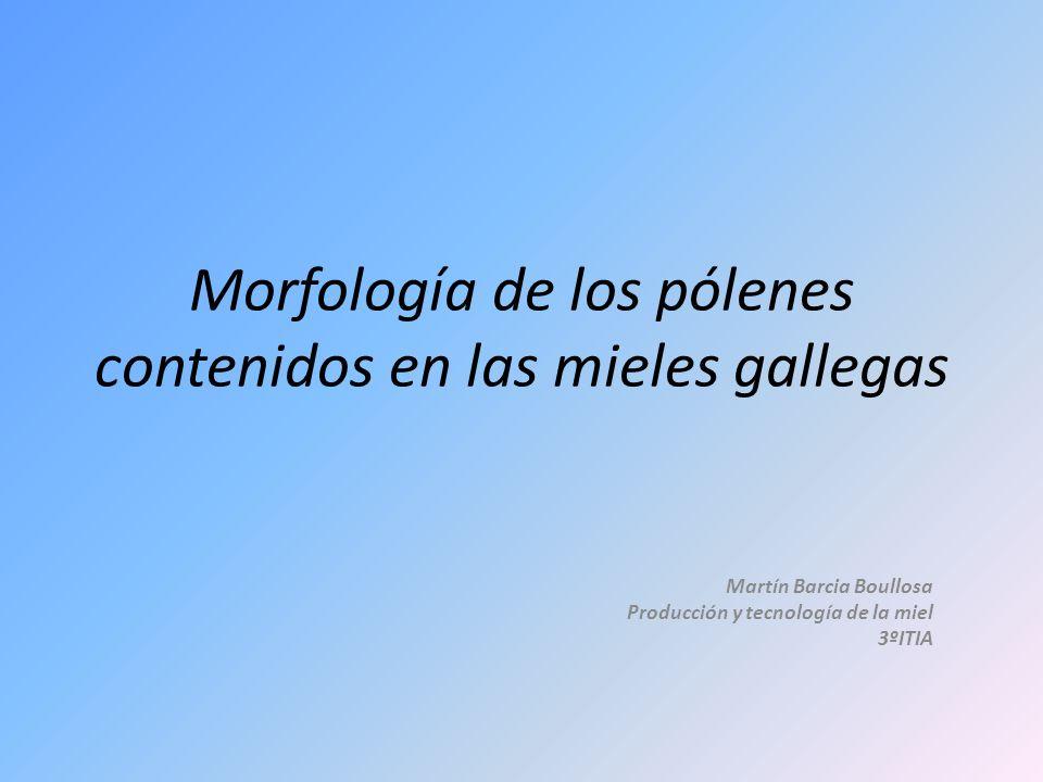 Morfología de los pólenes contenidos en las mieles gallegas Martín Barcia Boullosa Producción y tecnología de la miel 3ºITIA