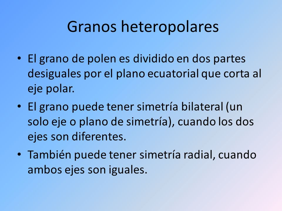 Granos heteropolares El grano de polen es dividido en dos partes desiguales por el plano ecuatorial que corta al eje polar. El grano puede tener simet