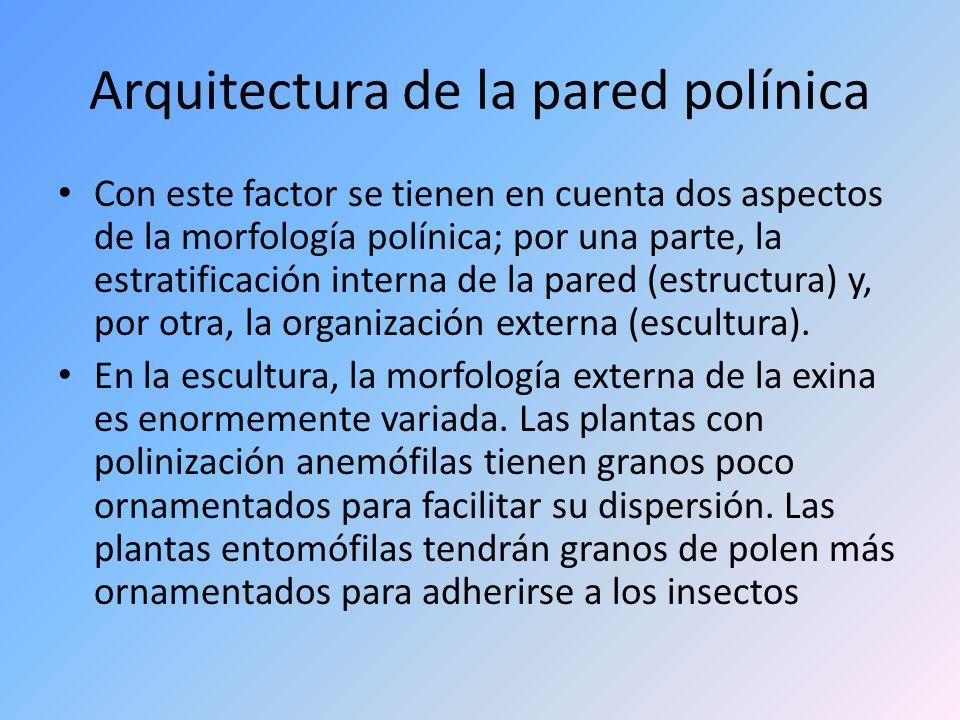 Arquitectura de la pared polínica Con este factor se tienen en cuenta dos aspectos de la morfología polínica; por una parte, la estratificación intern