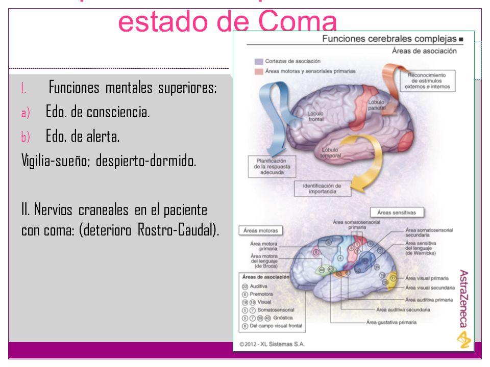 Exploración del paciente en estado de Coma I. Funciones mentales superiores: a) Edo. de consciencia. b) Edo. de alerta. Vigilia-sueño; despierto-dormi