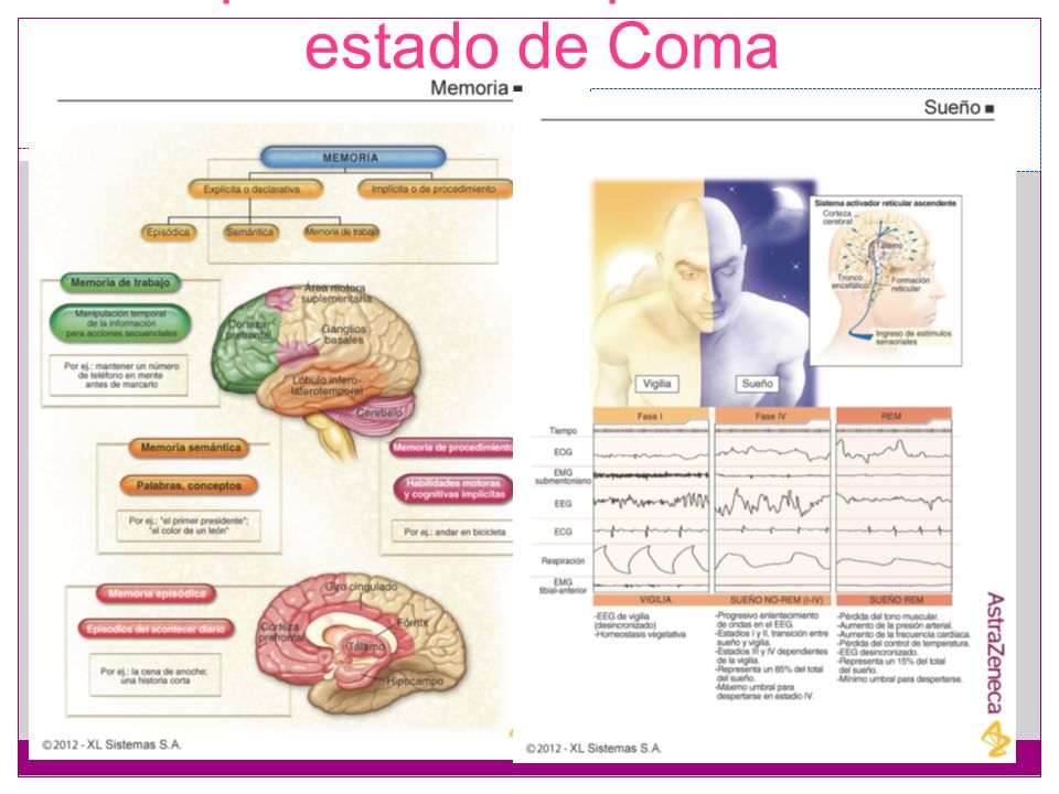 Exploración del paciente en estado de Coma Guía clínica para la exploración del paciente en estado de Coma. CRANIAL NERVES in health and disease Secon