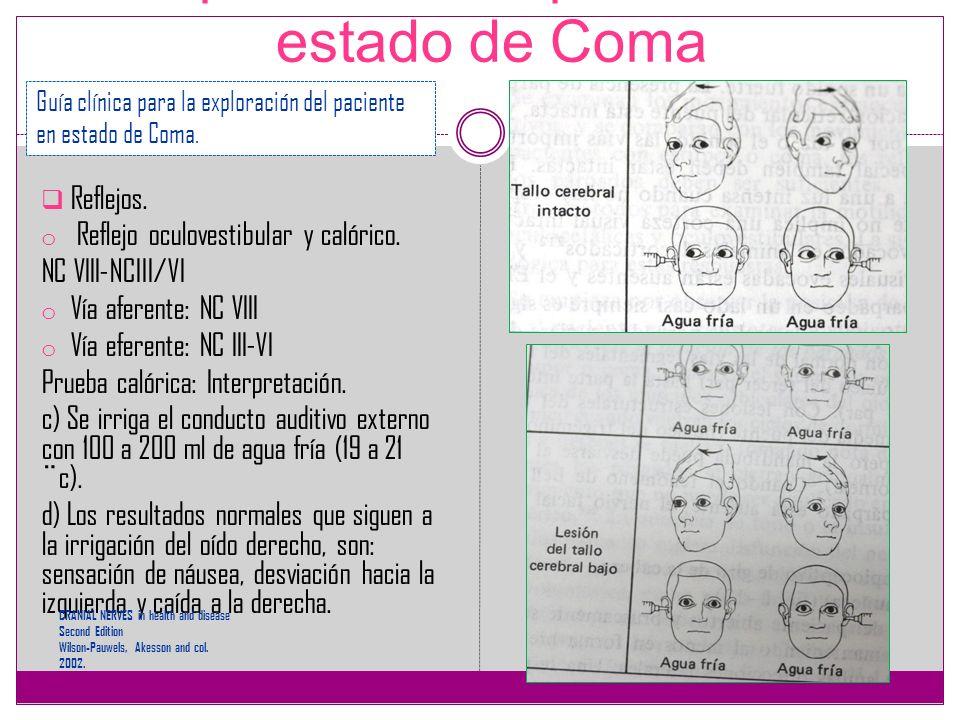 Exploración del paciente en estado de Coma Reflejos. o Reflejo oculovestibular y calórico. NC VIII-NCIII/VI o Vía aferente: NC VIII o Vía eferente: NC