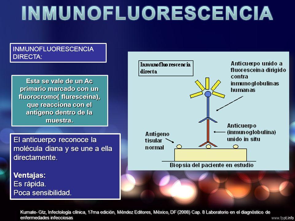 INMUNOFLUORESCENCIA DIRECTA: Esta se vale de un Ac primario marcado con un fluorocromo( fluresceína), que reacciona con el antígeno dentro de la muestra.