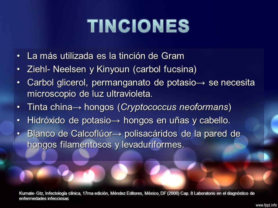 CULTIVO DE EXUDADO FARINGEO CON SIGNIFICADO CLÍNICO S.