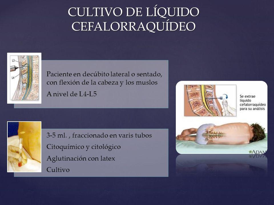 CULTIVO DE LÍQUIDO CEFALORRAQUÍDEO Paciente en decúbito lateral o sentado, con flexión de la cabeza y los muslos A nivel de L4-L5 3-5 ml., fraccionado en varis tubos Citoquímico y citológico Aglutinación con latex Cultivo