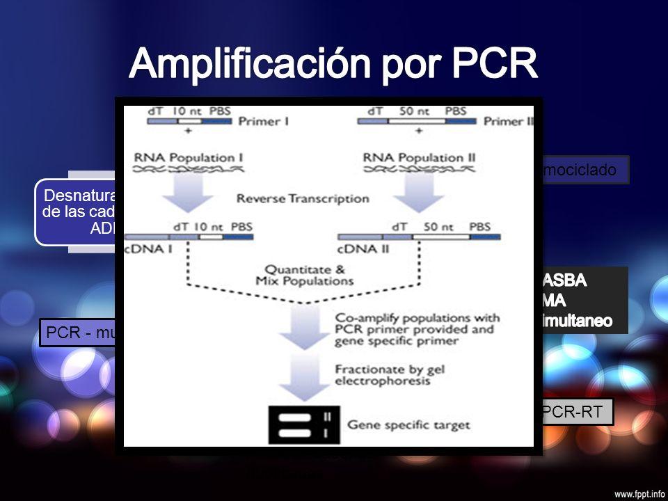 Desnaturalización de las cadenas de ADN Hibridación de los iniciadores Extensión de la secuencia amplificada Termociclado r PCR-RT PCR - multiplexLCR (Ligasa Chain Reaction) Hibridación con sondas especificas Amplificación de las sondas Ligamiento Producir cadenas duplicadas