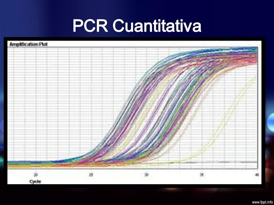 Cantidad de DNA concreta existente en una muestra Se duplica x cada ciclo Seguimiento fases iniciales Umbral arbitrario PCR tiempo real