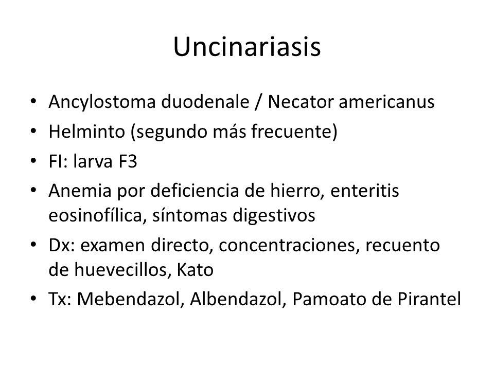 Uncinariasis Ancylostoma duodenale / Necator americanus Helminto (segundo más frecuente) FI: larva F3 Anemia por deficiencia de hierro, enteritis eosi