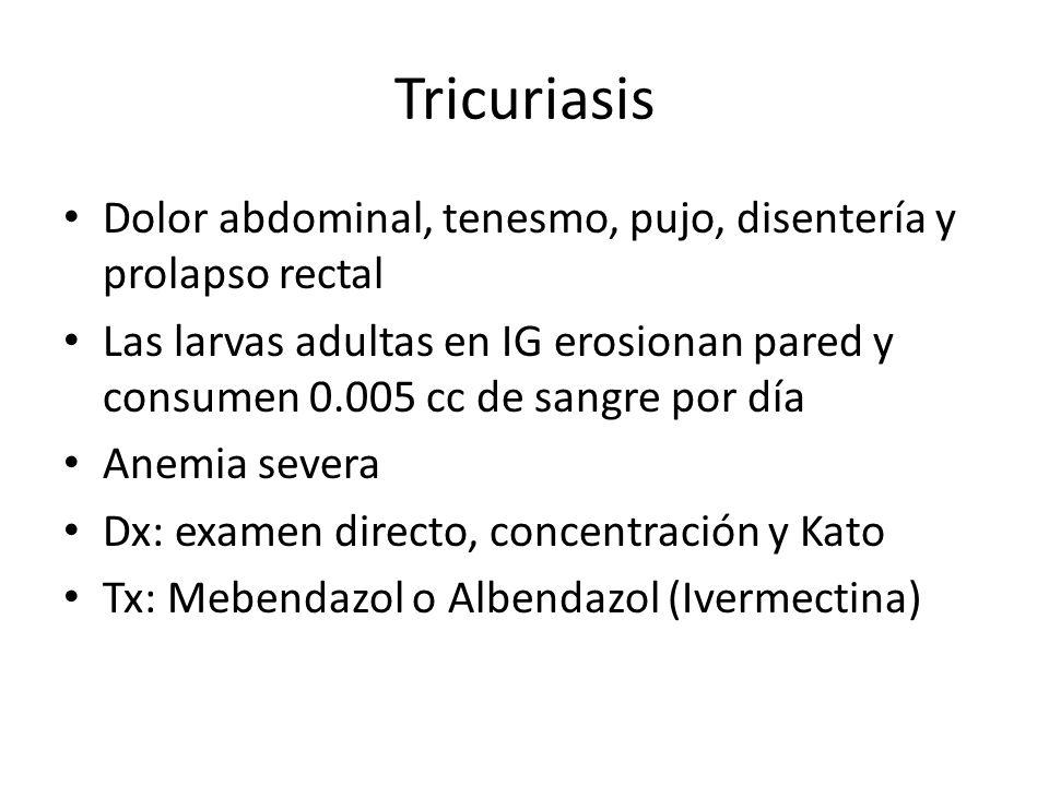Tricuriasis Dolor abdominal, tenesmo, pujo, disentería y prolapso rectal Las larvas adultas en IG erosionan pared y consumen 0.005 cc de sangre por dí
