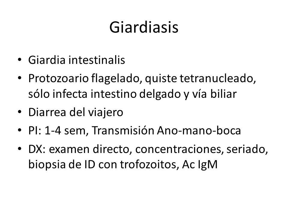 Giardiasis Giardia intestinalis Protozoario flagelado, quiste tetranucleado, sólo infecta intestino delgado y vía biliar Diarrea del viajero PI: 1-4 s