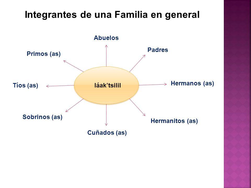 Integrantes de una Familia en general Abuelos Padres Hermanos (as) Hermanitos (as) Sobrinos (as) Cuñados (as) Tíos (as) Primos (as) láaktsilil