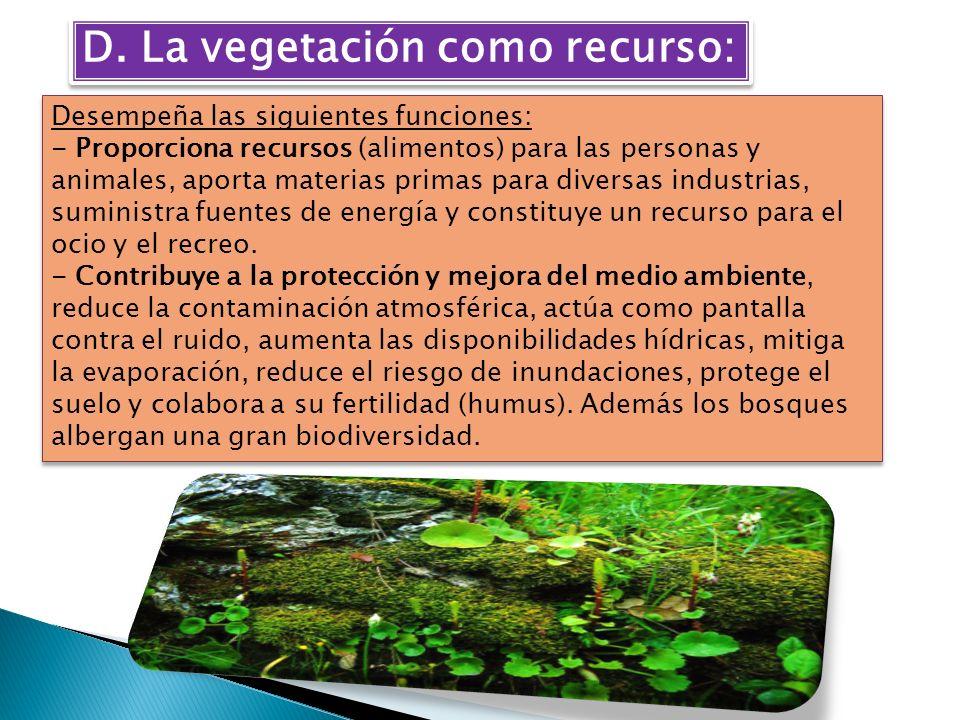 D. La vegetación como recurso: Desempeña las siguientes funciones: - Proporciona recursos (alimentos) para las personas y animales, aporta materias pr