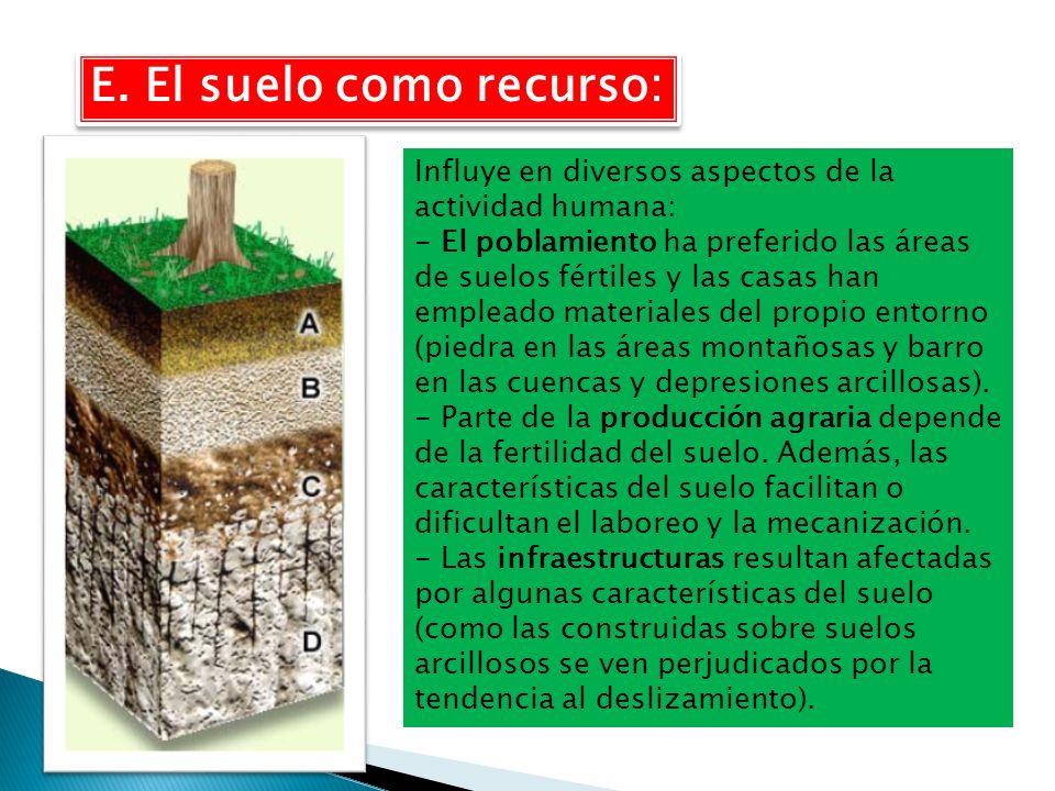E. El suelo como recurso: Influye en diversos aspectos de la actividad humana: - El poblamiento ha preferido las áreas de suelos fértiles y las casas