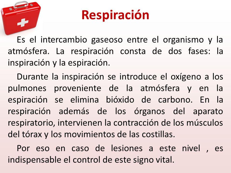 Respiración Es el intercambio gaseoso entre el organismo y la atmósfera. La respiración consta de dos fases: la inspiración y la espiración. Durante l