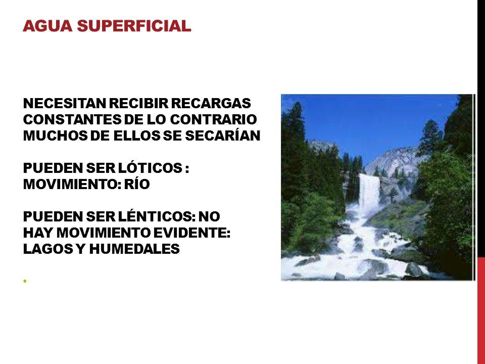 NECESITAN RECIBIR RECARGAS CONSTANTES DE LO CONTRARIO MUCHOS DE ELLOS SE SECARÍAN PUEDEN SER LÓTICOS : MOVIMIENTO: RÍO PUEDEN SER LÉNTICOS: NO HAY MOVIMIENTO EVIDENTE: LAGOS Y HUMEDALES AGUA SUPERFICIAL