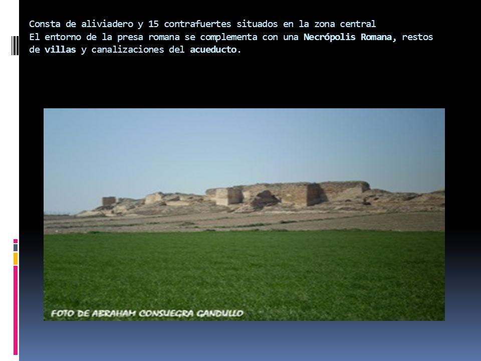 Consta de aliviadero y 15 contrafuertes situados en la zona central El entorno de la presa romana se complementa con una Necrópolis Romana, restos de