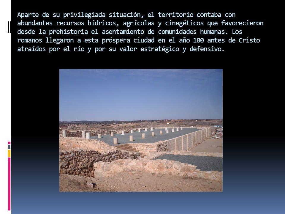 El yacimiento arqueológico está compuesto por restos inmuebles de una villa romana.